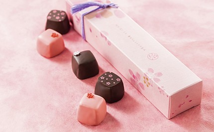 chocolate-430x265